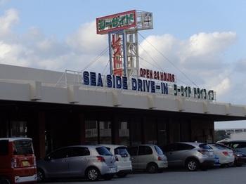 DSC00966a.jpg